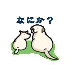 ぽちとルイ 1st(個別スタンプ:12)