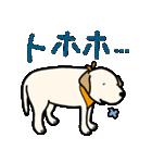 ぽちとルイ 1st(個別スタンプ:37)