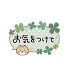 動く!敬語ふきだし☆クローバーとねこまる(個別スタンプ:18)