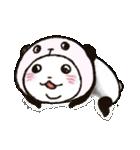 写真DEパンダinぱんだ(個別スタンプ:38)