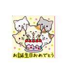 動く♪大人かわいい誕生日&おめでとう(個別スタンプ:3)