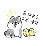 ほんわか黒しば(個別スタンプ:02)