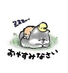 ほんわか黒しば(個別スタンプ:06)