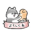 ほんわか黒しば(個別スタンプ:09)