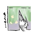 ほんわか黒しば(個別スタンプ:21)
