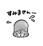 ほんわか黒しば(個別スタンプ:24)