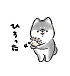 ほんわか黒しば(個別スタンプ:36)