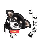 カスタムちわわ(個別スタンプ:2)