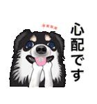 カスタムちわわ(個別スタンプ:36)