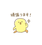 ぴよこ豆5(敬語)(個別スタンプ:34)