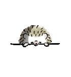 ごきげんハリネズミ-2-(個別スタンプ:30)
