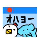 たまぞー&ピピちゃんのゆるいスタンプ(個別スタンプ:01)