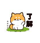 お返事シバイヌくん カスタムver.(個別スタンプ:05)