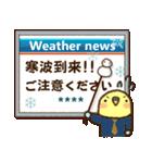 冬のインコちゃん【カスタム】(個別スタンプ:3)