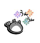 ネコかもしれないコロちゃん(個別スタンプ:12)