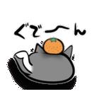 ネコかもしれないコロちゃん(個別スタンプ:22)