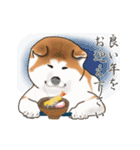 秋田犬の年末年始スタンプⅡ(個別スタンプ:1)