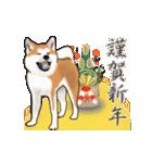 秋田犬の年末年始スタンプⅡ(個別スタンプ:2)