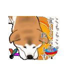 秋田犬の年末年始スタンプⅡ(個別スタンプ:8)