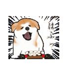 秋田犬の年末年始スタンプⅡ(個別スタンプ:18)