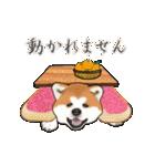 秋田犬の年末年始スタンプⅡ(個別スタンプ:20)