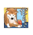 秋田犬の年末年始スタンプⅡ(個別スタンプ:22)