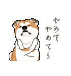 秋田犬の年末年始スタンプⅡ(個別スタンプ:23)