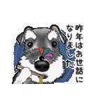 シュナウザー犬の年末年始スタンプⅡ(個別スタンプ:2)