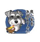 シュナウザー犬の年末年始スタンプⅡ(個別スタンプ:10)