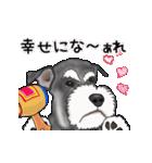 シュナウザー犬の年末年始スタンプⅡ(個別スタンプ:11)