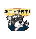 シュナウザー犬の年末年始スタンプⅡ(個別スタンプ:16)
