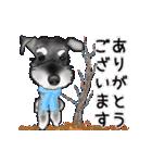 シュナウザー犬の年末年始スタンプⅡ(個別スタンプ:19)