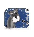 シュナウザー犬の年末年始スタンプⅡ(個別スタンプ:24)