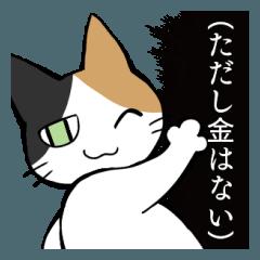 猫のつねひごろ(オタク編)