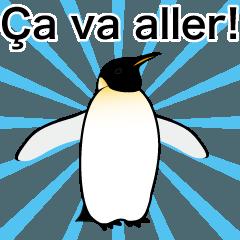 ダンディペンギン フランス語版