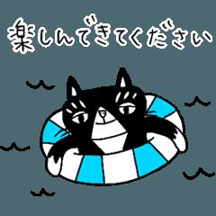 ハチワレ猫アンセルのシンプル敬語(夏)