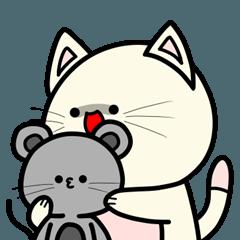 小さくてかわいい猫