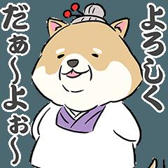 柴犬のシバ田さん夫婦
