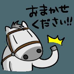 芦毛のシゲオ