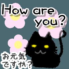 毎日使えるかわいい黒猫 英語編