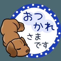 [LINEスタンプ] ダックス大好きスタンプ◆レッド優しい敬語