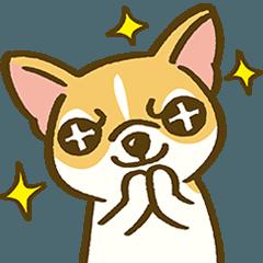 スカンクとスクワット - 子犬の日常生活