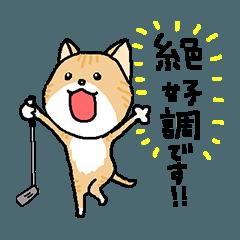 猫ゴルファー日常用 挨拶&ラウンドお誘い