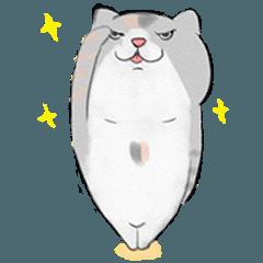 太猫バッハ