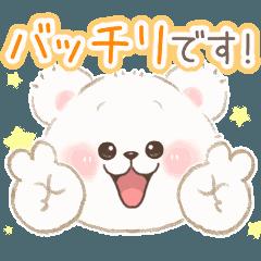 こぐまのしろっぷ♡褒め言葉編