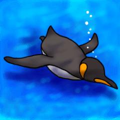 王様ペンギン2