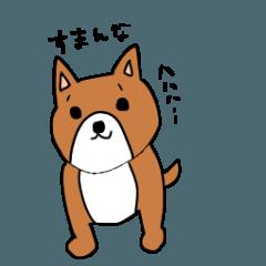 シュールな犬2