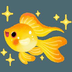 幸せな熱帯魚2