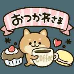 豆柴日和♡カラフルmix