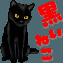 [LINEスタンプ] 今日も黒猫で!
